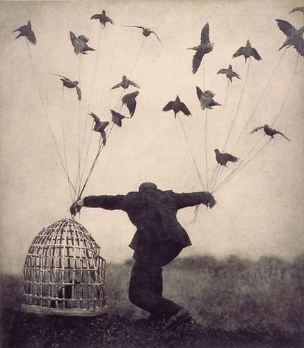vintage photo of man with bird shaped kites